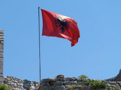 Арестувани са 9 полицейски началници в Албания