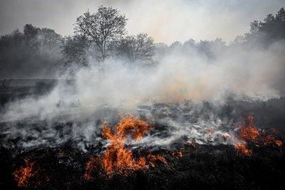 6 часа гасиха пожар в Пазарджишко