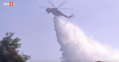 Разследват умишлен палеж на горския пожар край Атина