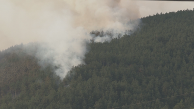 Пожарът край Твърдица все още не е овладян
