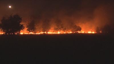 Овладян е големият пожар, който гори цяла нощ в Харманлийско