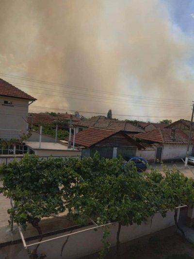 Военни се включиха в гасенето на пожара край с. Кръстевич