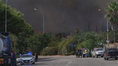 Голям пожар край Атина - стихията наложи евакуация