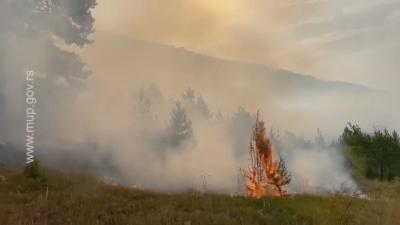 Горски пожари бушуват и в Западна Сърбия