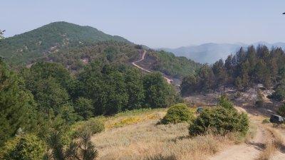 Локализиран е пожарът в Голешево, няма опасност за хората