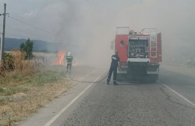 Пожар избухна на Е79 край село Мурсалево (СНИМКИ)