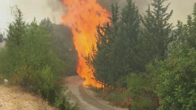 Пожарите в Анталия са под контрол, гасенето продължава