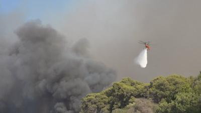 Изгорели къщи и евакуирани села в Пелопонес - няма пострадали българи