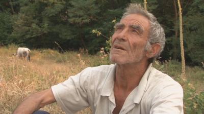 Свидетел на трагедията в пожара край Петрово: Те бягаха, но огънят буквално ги прегърна