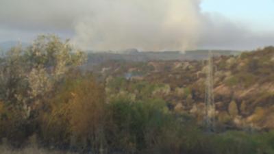 Над 1000 декара иглолистни гори са изгорели при пожара в Перник