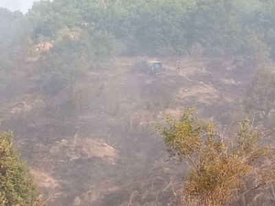 МС отпуска по 15 000 лв. еднократно за семействата на загиналите в пожар горски служители