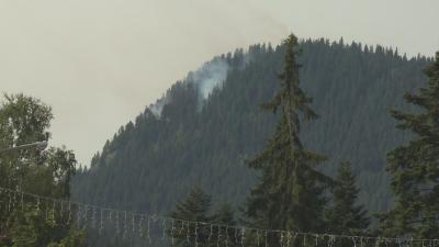 90% от пожара в Рила е овладян