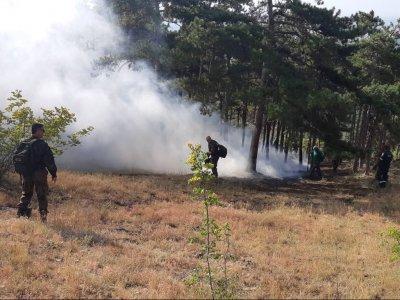 Военнослужещи помагат за гасенето на пожар до хисарското село Михилци