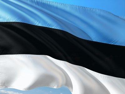 Един кандидат на изборите за президент в Естония