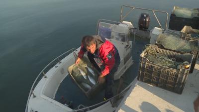 Доволни ли са рибарите от улова във Варна