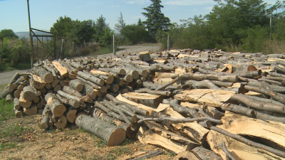 Колко ще струва отоплението на дърва тази зима?