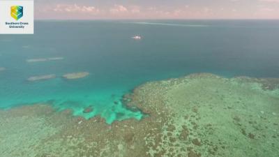Спасяват коралите от Големия бариерен риф със защитни облаци