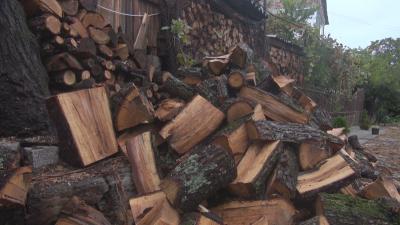 Проблем с дървата за огрев в Черноморец