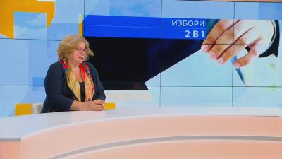 Румяна Дечева, обществен съвет към ЦИК: Много малко са мъртвите души в избирателните списъци