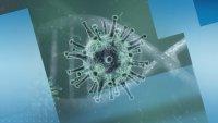 Случаи на коронавирус са регистрирани в 81 държави