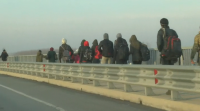 Атина и Анкара в задочен спор за броя на мигрантите, които от Турция са преминали в ЕС