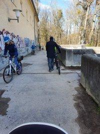 снимка 2 В Мюнхен не спазват мерките срещу COVID-19, парковете са пълни с хора