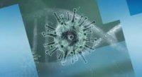 Общият брой на смъртните случаи в Турция от коронавируса достигна 44