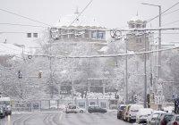 снимка 13 Снежна София през март