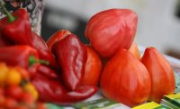 БАБХ спря над 24 т вносни зеленчуци от трети страни с наличие на пестициди