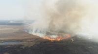 Пожар в най-големия национален парк в Полша