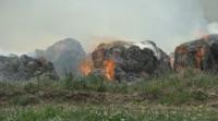 Пожар гори край руенското село Просеник