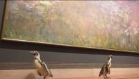 Културни развлечения за пингвини
