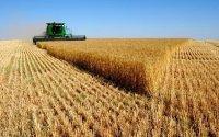 Над 100 хиляди заявления за субсидиране, подадени от земеделците