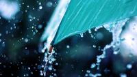 Най-много дъжд във Видин - 64 л/кв. м. До утре валежите спират
