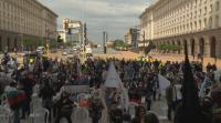 Мая Манолова с протест и заявка за участие в избори, Деница Сачева ѝ отговори