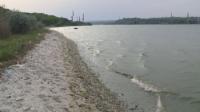 Рибата във Варненското езеро измряла заради повишено съдържание на амониев азот
