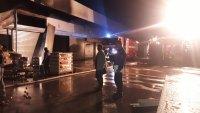 снимка 4 Двама души са леко обгорели при пожара на борсата край Петрич, няма опасност за живота им