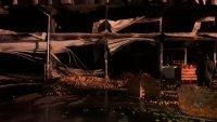 снимка 1 Двама души са леко обгорели при пожара на борсата край Петрич, няма опасност за живота им