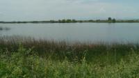 17-годишно момче се удави в язовир край Раковски, приятелите му 4 дни криели инцидента