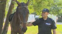 Кой е полицаят, който храни катерички в парка?