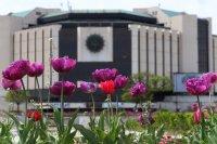 НДК съкращава 30% от персонала си заради COVID-кризата