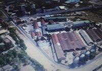 Откриха снаряд от Втората световна война в стъкларския завод в Пловдив