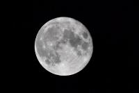 САЩ и Япония съвместно ще изследват Луната