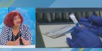 Проф. Бояджиева: Има голяма надежда за ваксина срещу COVID-19