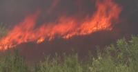 Голям пожар пламна в Хасковско