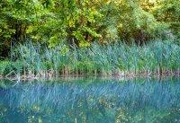 снимка 12 С каяк и водно колело по река Златна Панега (СНИМКИ)