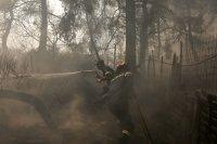 Евакуираха детски лагер и местно население заради голям пожар на Пелопонес