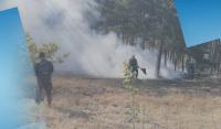 Локализиран е пожарът край старозагорското село Дълбоки