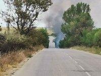 снимка 1 Нов пожар на изхода на Асеновград, огънят вече е потушен