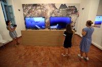 """снимка 3 Гърция откри първия по рода си подводен музей """"Партенон на корабокрушенията"""" (Снимки)"""